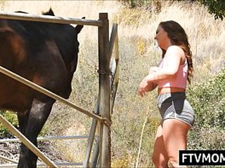 cougar having fun anent a horse