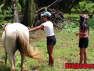 HEATHERDEEP.COM TEEN Girls vs Horse parade-ground weasel words